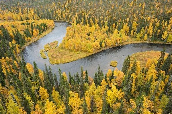kitkajoki-river-oulanka-finland_18562_600x450