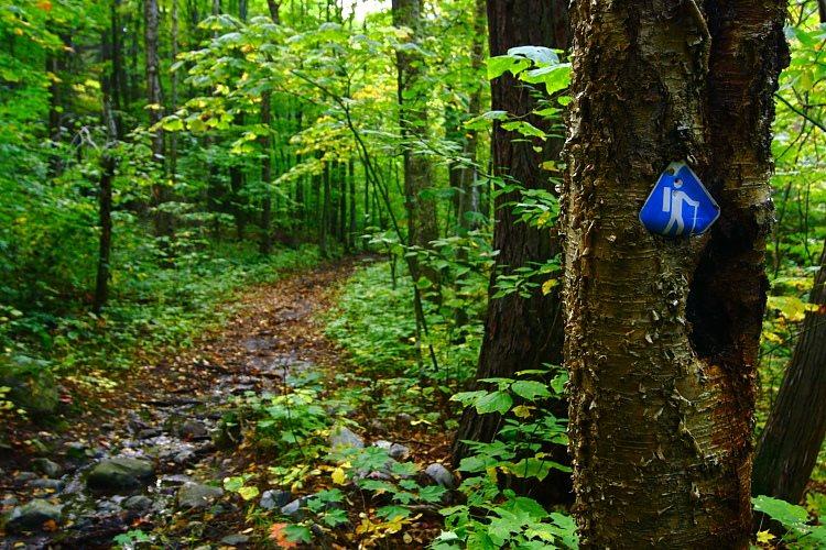 20101019-killarney-provincial-park-la-cloche-silhouette-trail