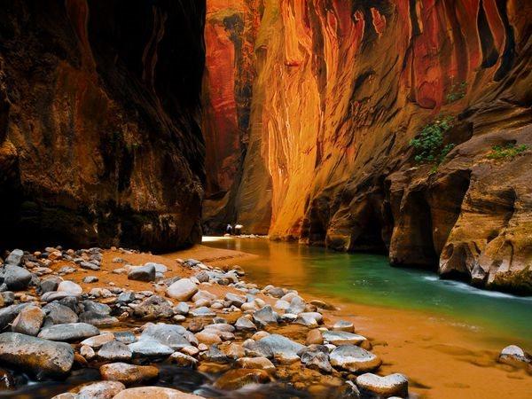 zion-sandstone-cliffs_2012_600x450