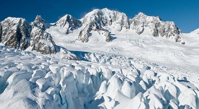 fox-glacier-55701