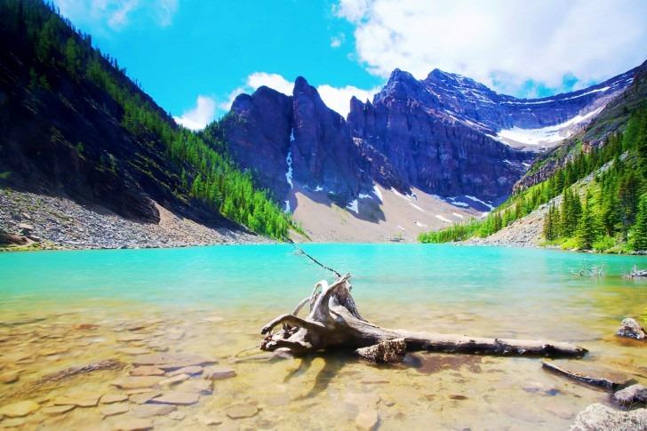Lake-Agnes-Banff-National-Park-Alberta-Canada-485x728