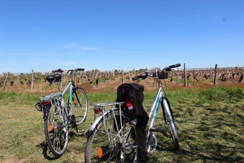 vélo Loire